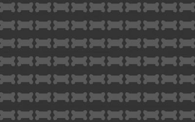 rtypex_pbs_header